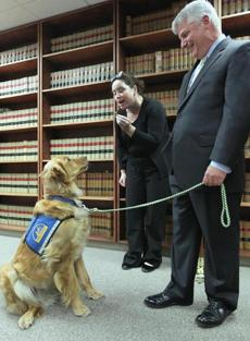 Suffolk County District Attorney Daniel F. Conley looked on as handler Kara Hayes gave a treat to Indy.